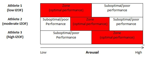 Individual Zones of Optimal Functioning