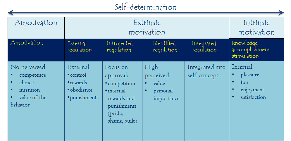 Leadership: Intrinsic vs Extrinsic Motivation