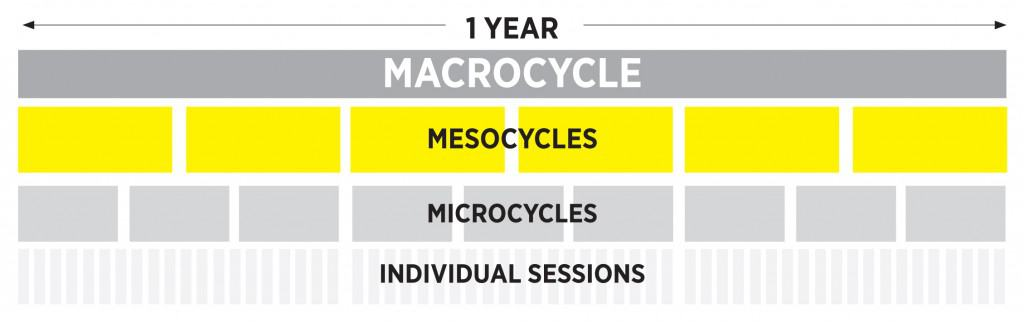 Mesocycle In Sport Definition Essay - image 2
