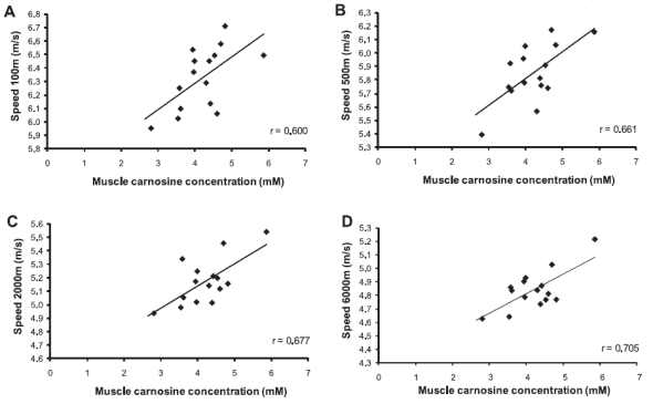 Muscle carnosine in rowing performance