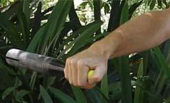 Scull handle technique