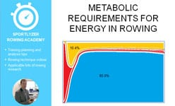 Metabolic requirements for energy in rowing